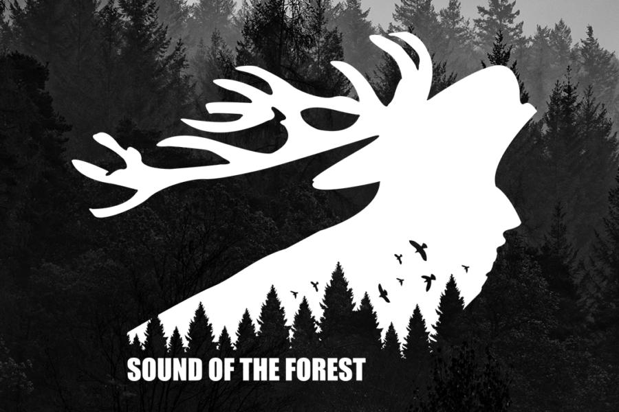 Sound of the Forest 2021 auf 2022 verlegt
